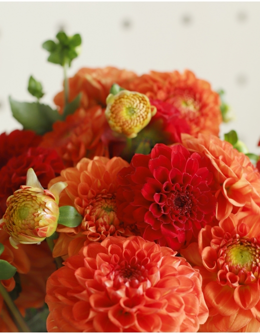 Botte surprise de Dahlias