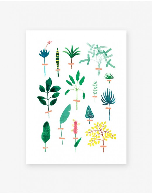 Poster herbier exotique